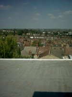 The view from the roof of the house I grew up in